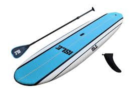 Billedresultat for paddleboard