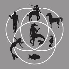 A Venn Diagram Tracks Which Of The Following Human Horse Fish Venn Diagram T Shirt Snorgtees