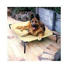 raised outdoor dog bed extra large elevated pet beds luxury mat pad cot diy