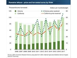 California Growing Season Chart Us Production Of Romaine Lettuce Is Growing
