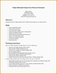 Sample Resume For Flight Attendant 10 Flight Attendant Sample Resumes World Heritage Hotel Com