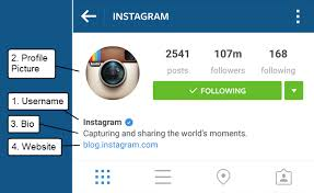 instagram profile 2015. Contemporary Profile Instagram Optimization  Profile Elements Intended Instagram Profile 2015 R