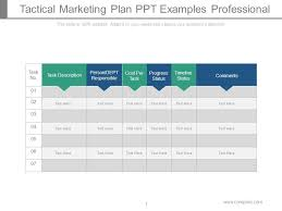 Sample Marketing Plan Powerpoint Tactical Marketing Plan Ppt Examples Professional Template