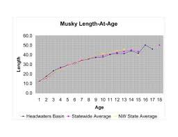 Musky Length Weight Chart Muskiefirst Muskie Growth Rate General Discussion
