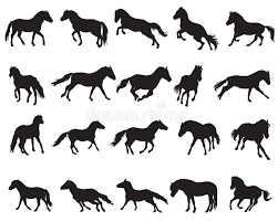 Foal Color Chart Pony Color Chart Stock Illustrations 35 Pony Color Chart