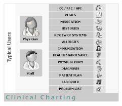 Clinical Charting Software Medical Charts Electronic