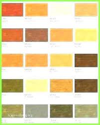 Rustoleum Concrete Stain Colors Rust Kits Kit Sealer Acid