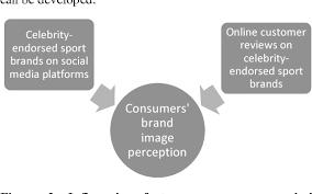 Sport Brands Pdf Online Customer Reviews Vs Celebrity Endorsed Sport
