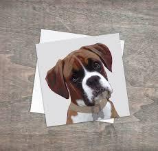 greeting card boxer dog