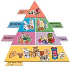 food pyramid 2015 kids.  Pyramid FoodPyramid To Food Pyramid 2015 Kids