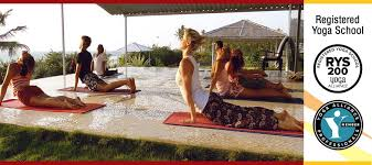 ryt 200 hours course with yoga alliance usa yoga alliance professionals certification 780 per person non residential course
