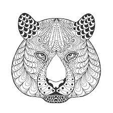 Witte Tijger Vectoren Illustraties En Clipart 123rf