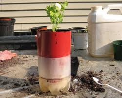 picture of add the wick the potting mix and your plant