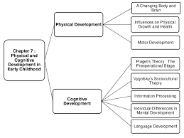 cognitive development essay questions   types of validity in    free cognitive development essays and papers   in piagets vision  a schema includes both a group of understanding and the procedure of gaining that