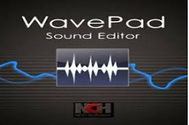 Image result for wavepad sound editor logo