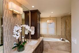 thornhill master bath 2