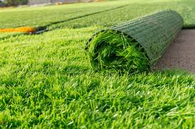 Artificial turf Dog Many Hoa Boards Are Illinformed On Artificial Turf Since The Drought In California New Laws Protect Property Owners From Mandates They Remove The Shinryo Home Boxing Bag Hoa Homefront Can The Board Mandate Switch To or From