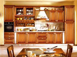 kitchen cabinets doors design of kitchen attractive a laminated kitchen cabinets diy kitchen cupboard door ideas