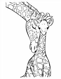 Small Picture Baby Giraffe Coloring Pages Coloring Pages