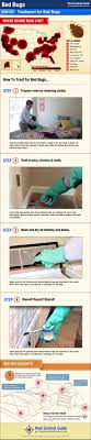 How To Get Rid of \u0026 Kill Bed Bugs - DIY Bed Bug Treatment