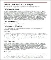 Cvs Examples For Personal Profile Sample Cv Engineering