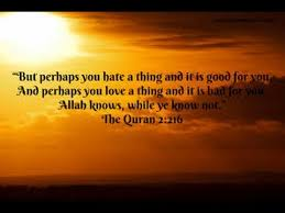 Quran Quotes Delectable Koran Quotes Quran Quotes About Islam YouTube