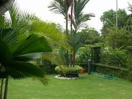 Small Picture Garden Design Ideas Small Gardens Malaysia Sixprit Decorps