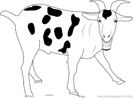 Small Picture Goat Coloring Pages Printable Coloring Pages of Goats