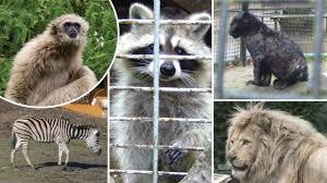 zoo welke