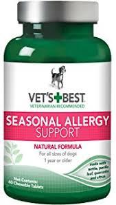 Amazon.com : Vet's Best Allergy Itch Relief Dog Shampoo, 16 oz : Pet ...