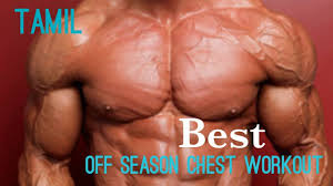 Best Mass Chest Workout Chart Off Season Bodybuilding Chennai Fitness Tamil