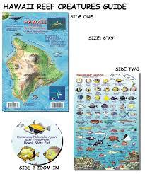 Oahu Fish Chart Hawaii Reef Creatures Guide Fish Card