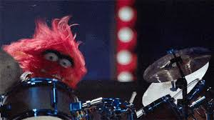 animal muppet drums gif. Brilliant Gif Gfycat URL With Animal Muppet Drums Gif A