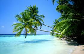 Sommer Sonne Strand Und Meer Gruppe