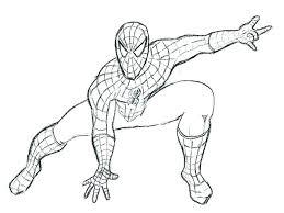 Spiderman Coloring Book Pdf Studens Info
