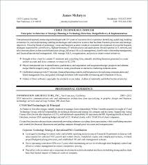 Free Executive Resume Template Delectable Executive Resume Samples Free Executive Resume Samples Free