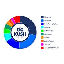 Og Kush Profile