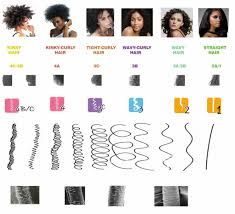 Andre Walker Hair Chart The Andre Walker System Hair Typing Chart The Salon And