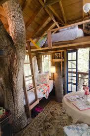 Tree House Decorating Ideas Treehouse Interiors New Tree House