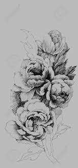 夏の庭の牡丹の花のイラスト