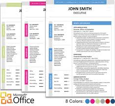Resume Templates For Executives Magnificent EXECUTIVE Resume Template Trendy Resumes
