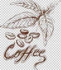 Bean organic coco berry coffee scrub. Coffee Bean Food Png Clipart Art Artwork Artwork Vector Bean Black And White Free Png Download