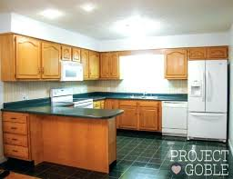 Painting Kitchen Appliances Painting Maple Cabinets Antique White Re Kitchen  Transformation Painted Counters With Appliances Painting .