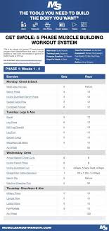 Get Swole 5 Phase Muscle Building Workout System