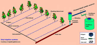 home irrigation design. how to design an irrigation system at home best ideas