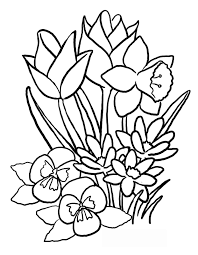 Small Picture Tulip Flower Coloring Pages Flower Coloring pages of