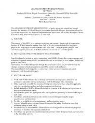 marketing audit example essay edu essay marketing audit example essay