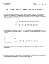 Translation Vs Transcription Venn Diagram Transcription And Translation Worksheet Key Worksheets Excel