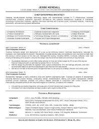Technical Architect Resume Infrastructure Architect Resumes Java