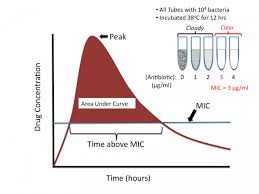 Antibiotic Mic Chart Time _concentration Dependent_killing Tusom Pharmwiki